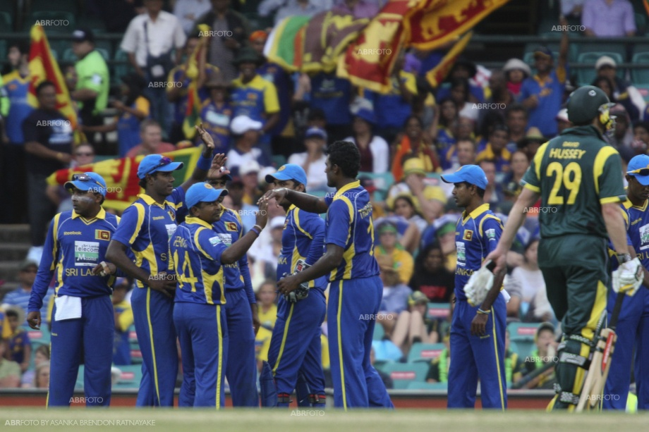 Sri Lankans celebrate after getting the valuable wicket of David Hussey