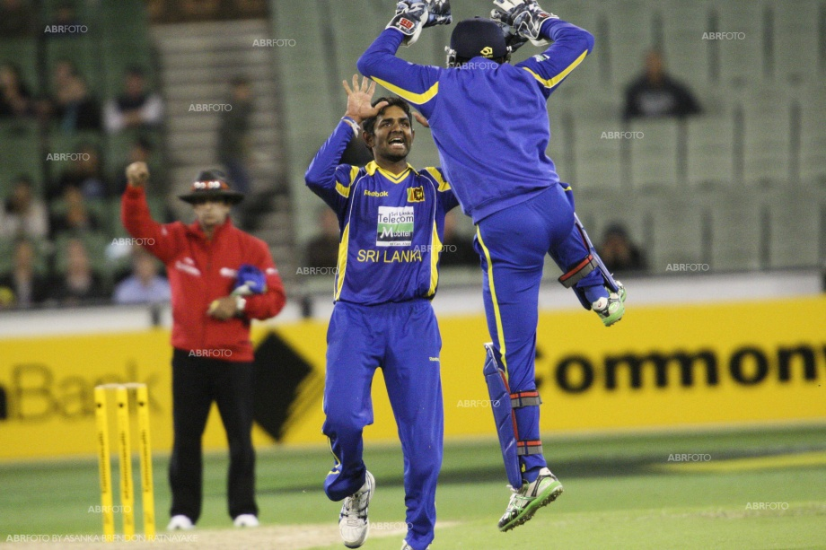 Thirimanne celebrates the wicket of Hussey