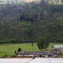 Most beautiful cricket ground in Sri Lanka